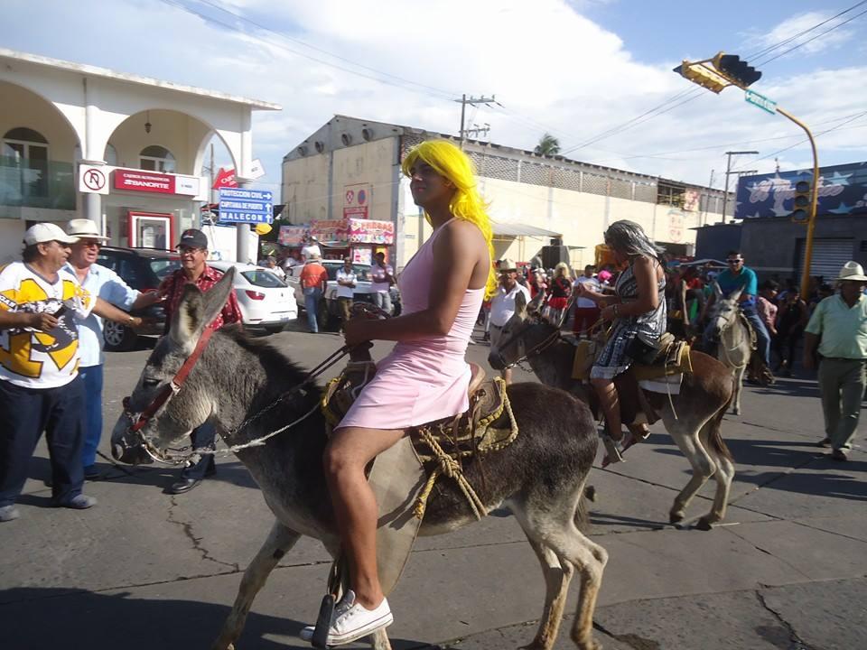Tradicional encierro de burros en Alvarado, Veracruz