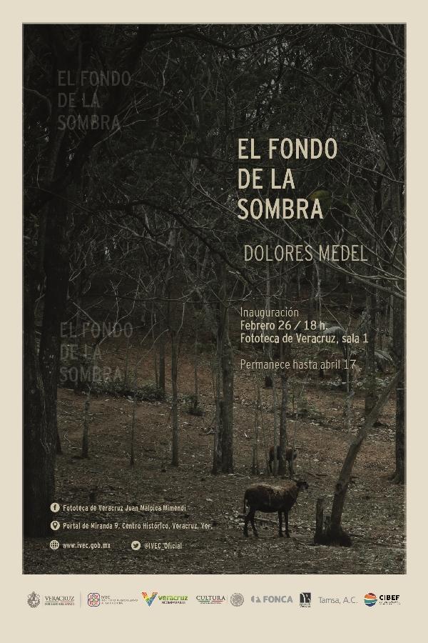 Dolores Medel, Koral Carballo, Sebastian Kunold y Miguel Fematt exponen en Fototeca de Veracruz