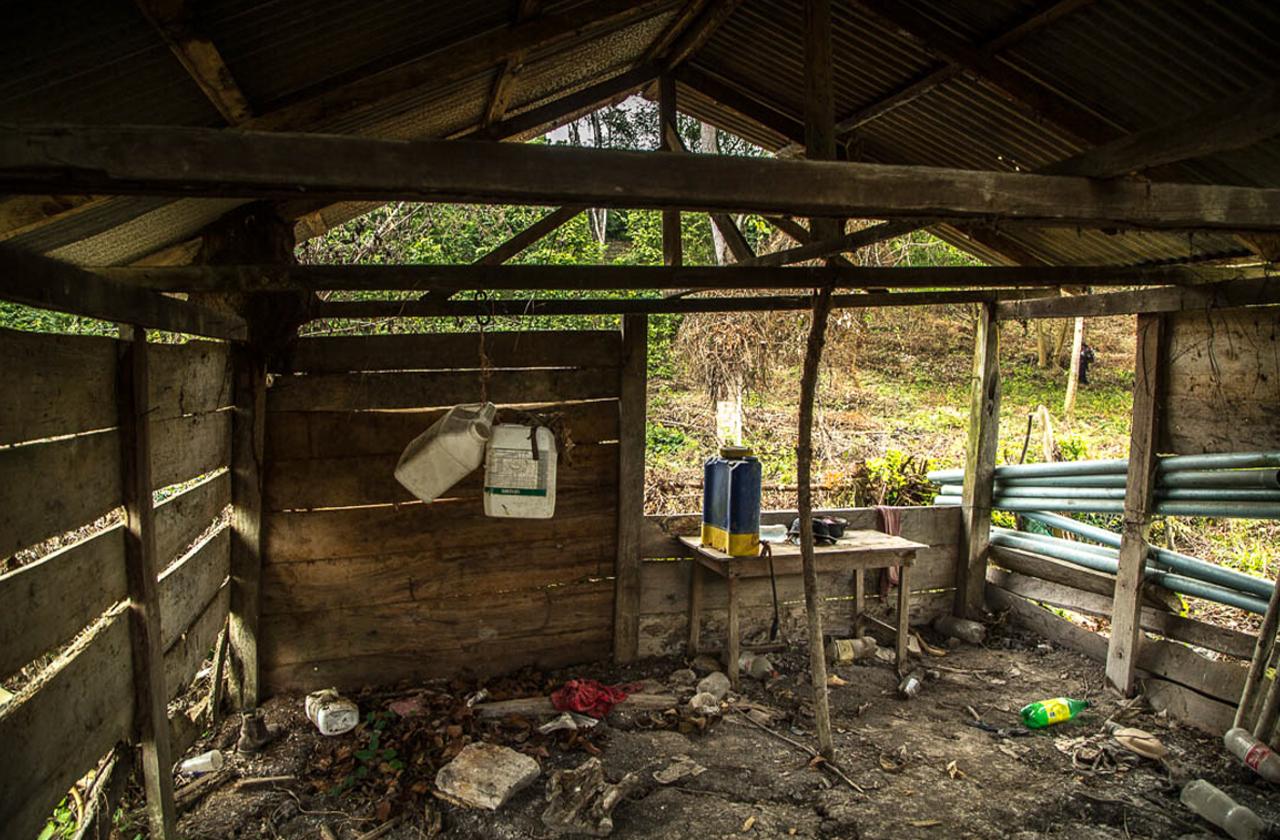Veracruz: expolicía testifica sobre sistemática desaparición de cuerpos