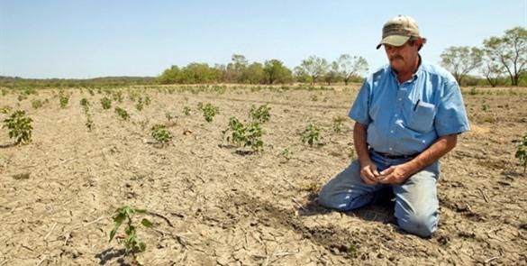 """El dinero para la agricultura en """"destinos oscuros"""": Víctor Villalobos"""