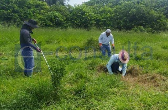 Por falta de equipo, paran búsquedas en fosas de Villarín
