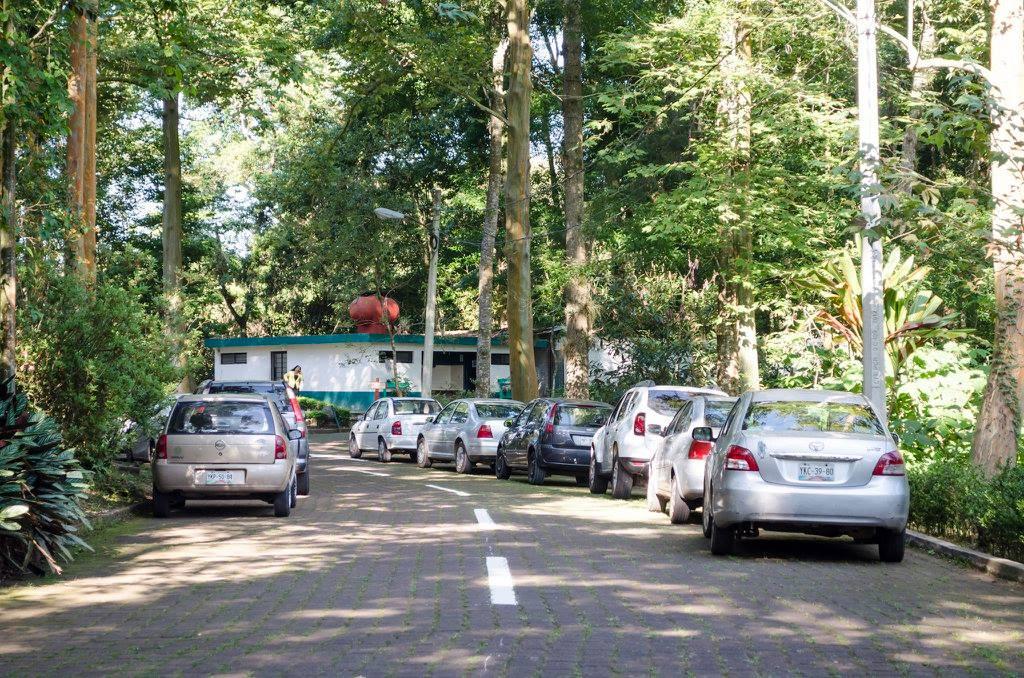 Invaden parque El Haya con automóviles de burócratas: vecinas