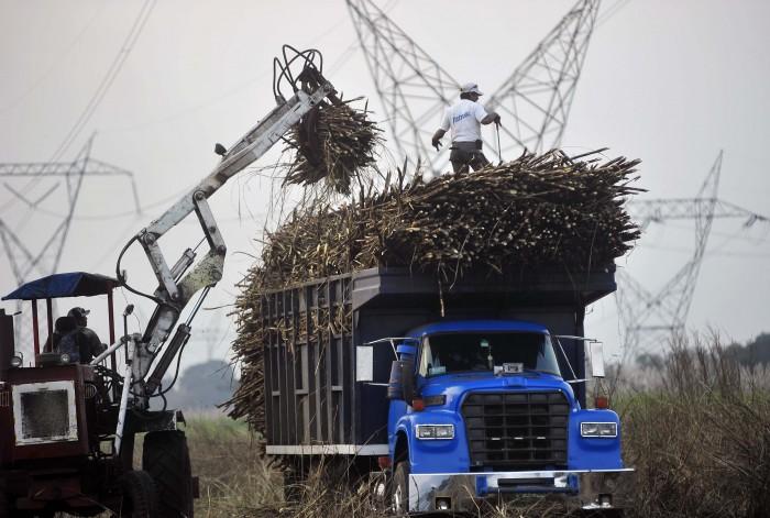 A la venta cuatro ingenios azucareros de Veracruz