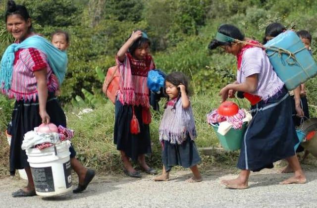 Ricos roban candidaturas indígenas en Chiapas: abogado