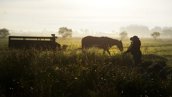 Sagarpa tiene 2 mil 800 mdp en subejercicio: Campesinos