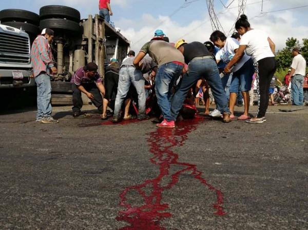 Se accidenta camión con reses en la Cosoleacaque-Acayucan