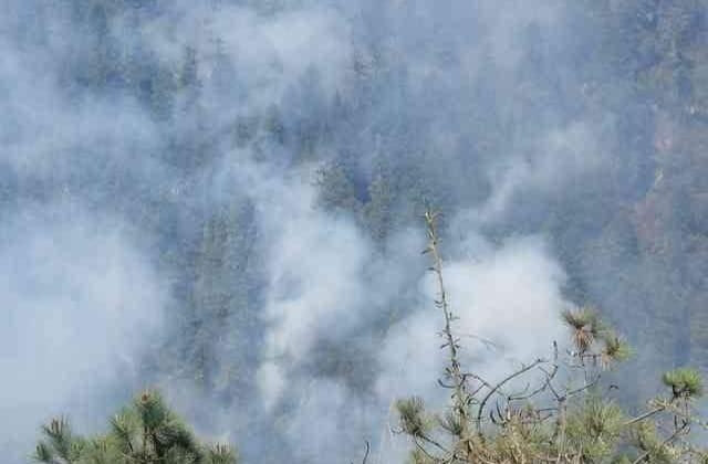 Talamontes causan incendios en Pico de Orizaba: Cuitláhuac