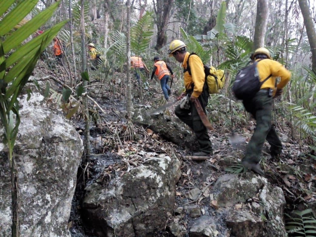 Incendio forestal en Alto Lucero consumió  915 hectáreas