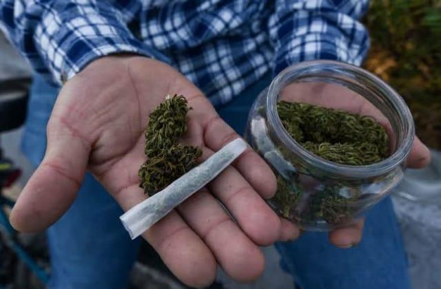 Nuevo reglamento: Así te podrán vender ahora marihuana medicinal