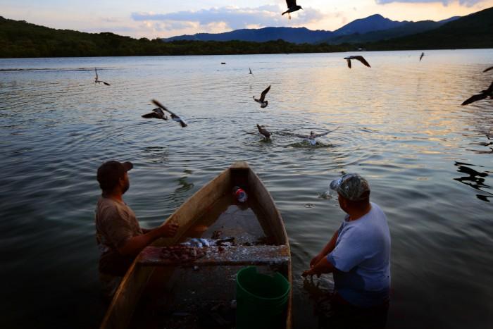 La Paila: el proyecto minero que amenaza corredor de aves y sitio ramsar