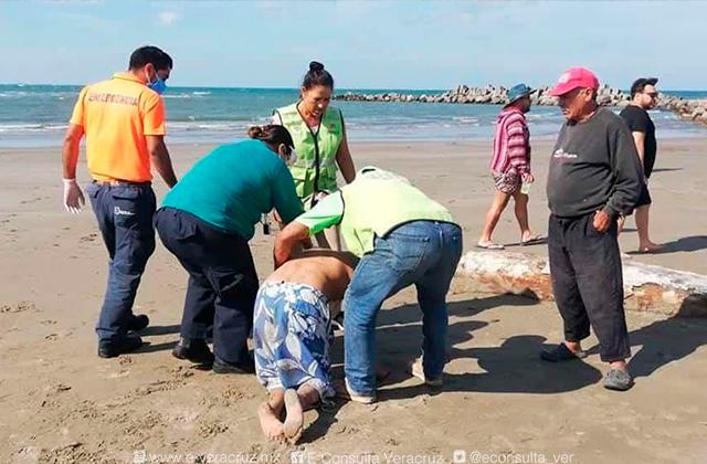 A pesar de pandemia playas jarochas registraron más accidentes