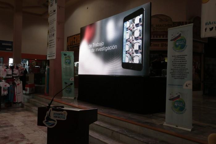 Acuario de Veracruz lanza aplicación de realidad aumentada