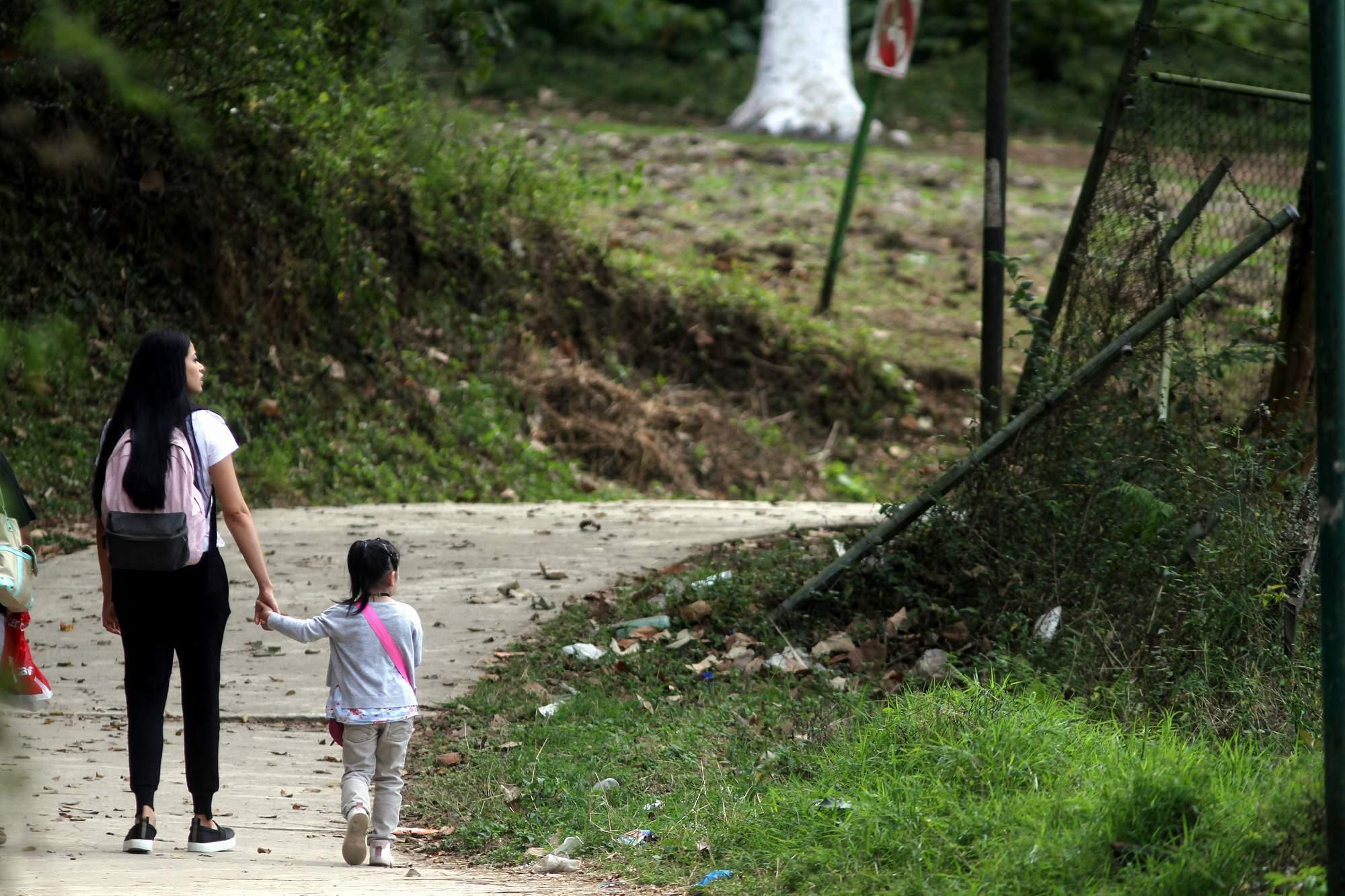 Ante feminicidios, crean proyecto de rescate al Santuario de las Garzas