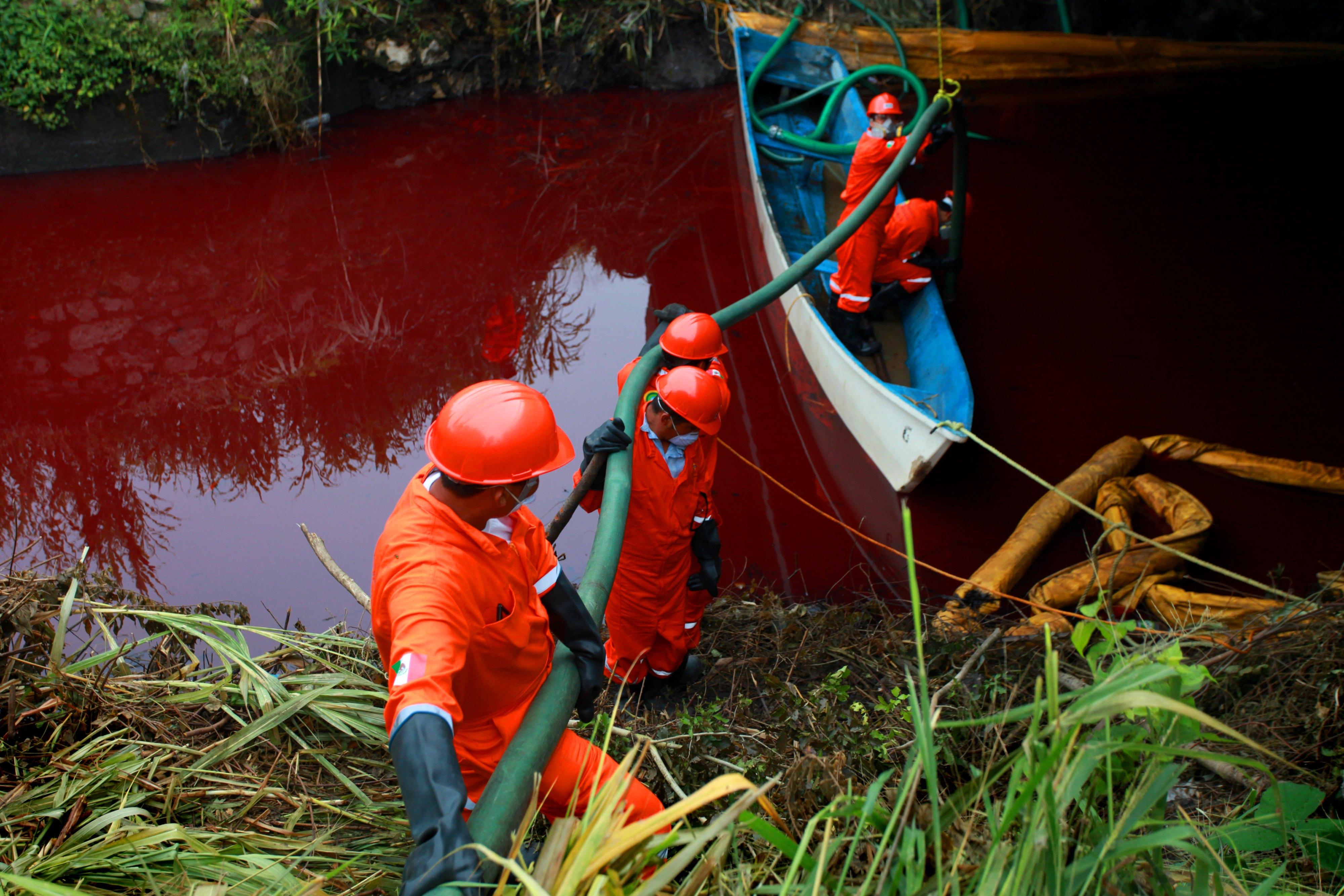 Autoridades configuran devastación del medio ambiente: LAVIDA