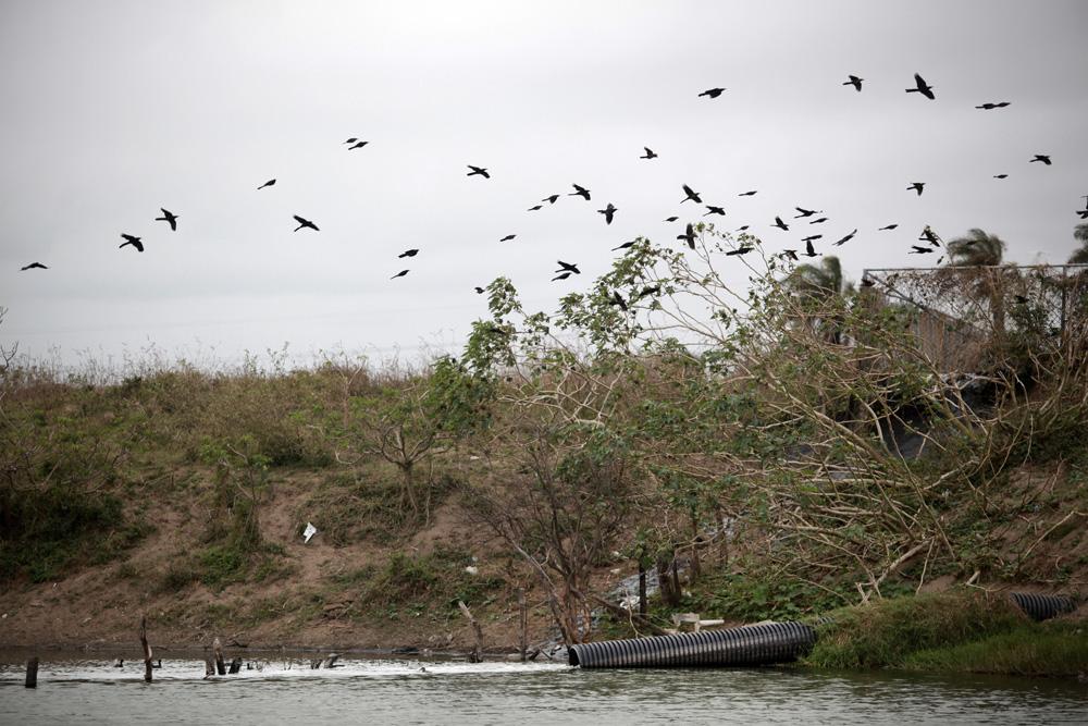 Veracruz debe ser el granero de México, rescatando cuencas hidráulicas