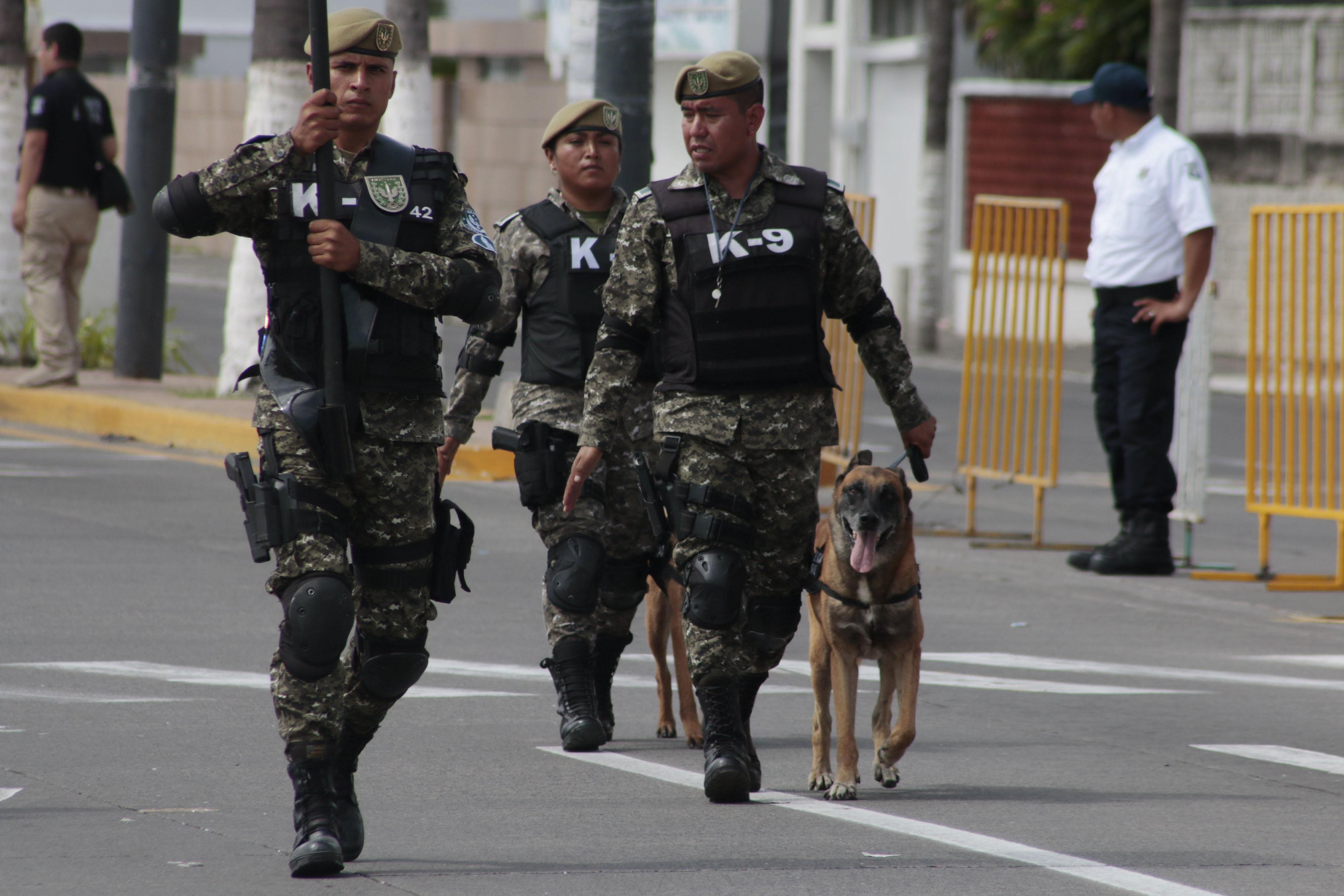 Hay incapacidad para crear una policía que de seguridad y confianza: Suárez