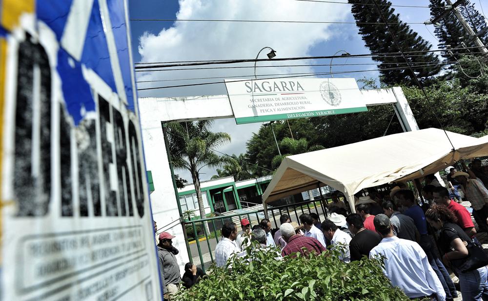 Cafetaleros continúan toma de instalaciones de Sagarpa