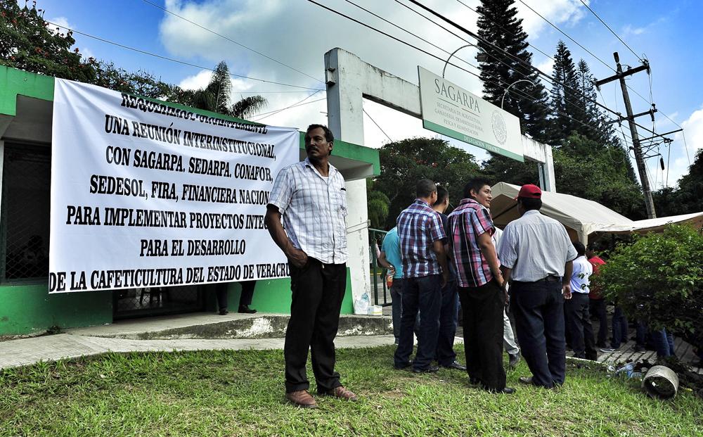Cafetaleros exigen entrega de recursos de programa emergente