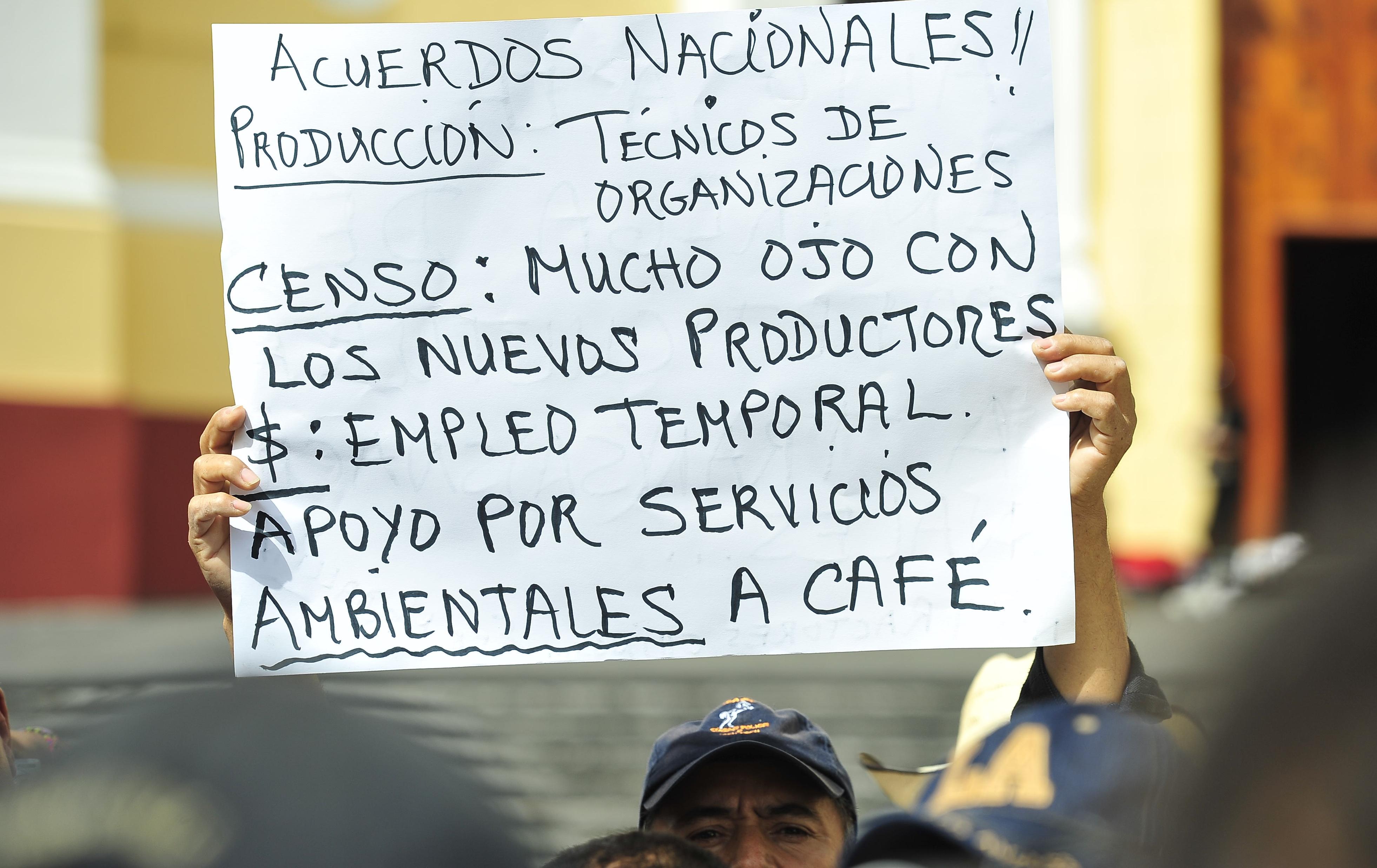 Cafetaleros exigen entrega de recursos para combatir la roya