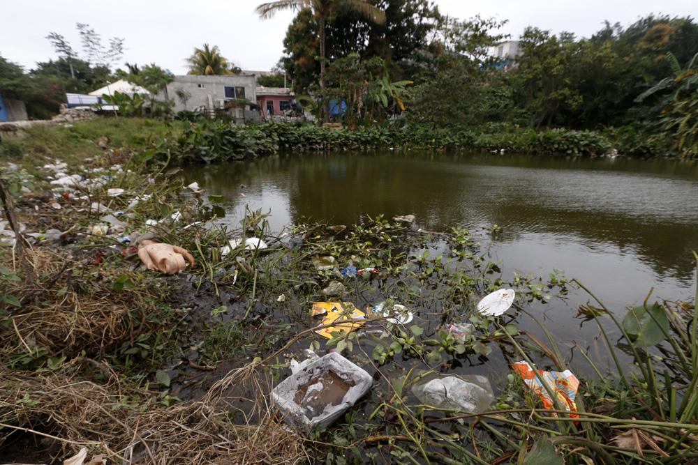 Rellenan el manglar de Boca del Río