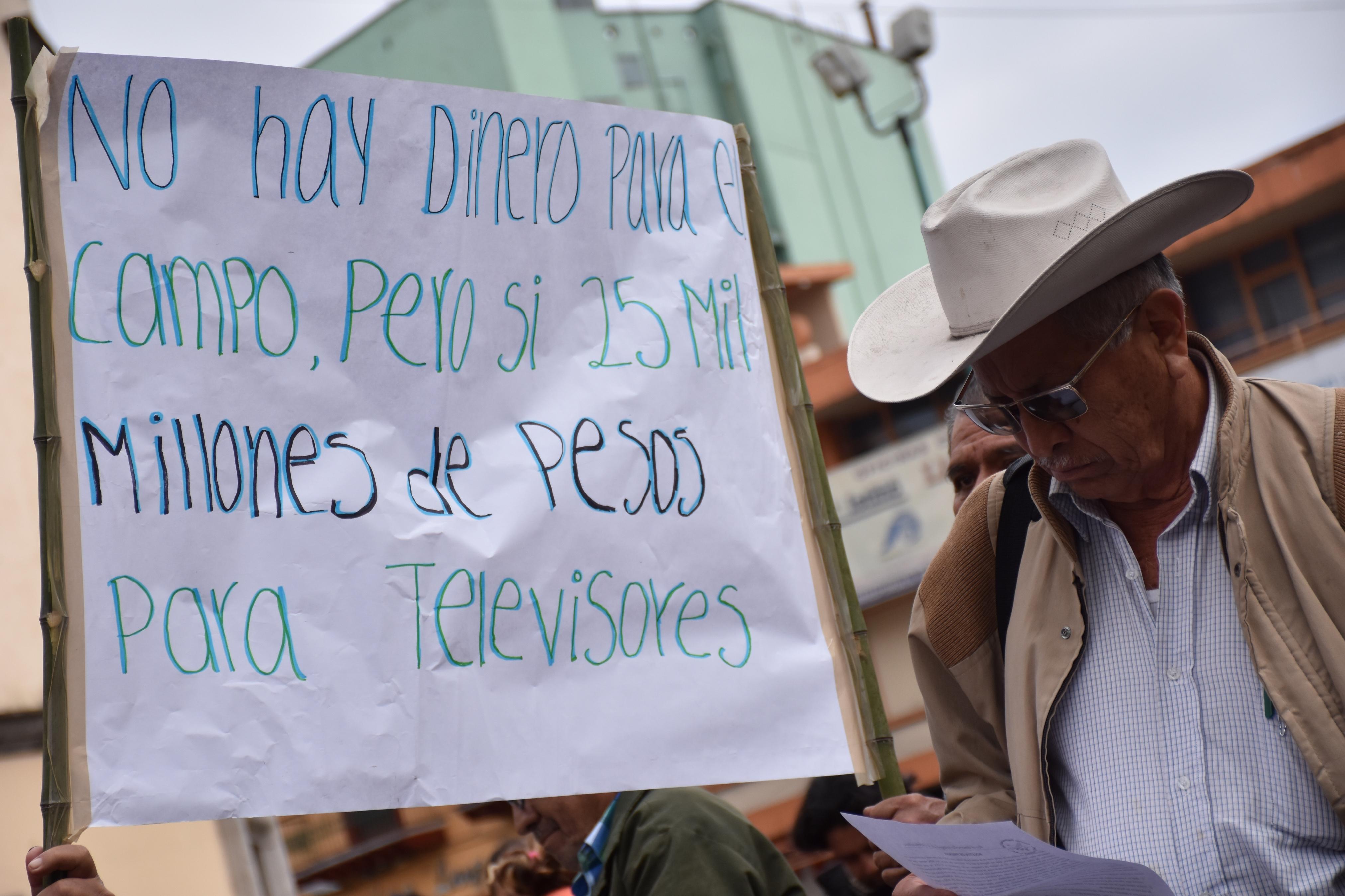 Cafetaleros veracruzanos denuncian importación ilegal de café
