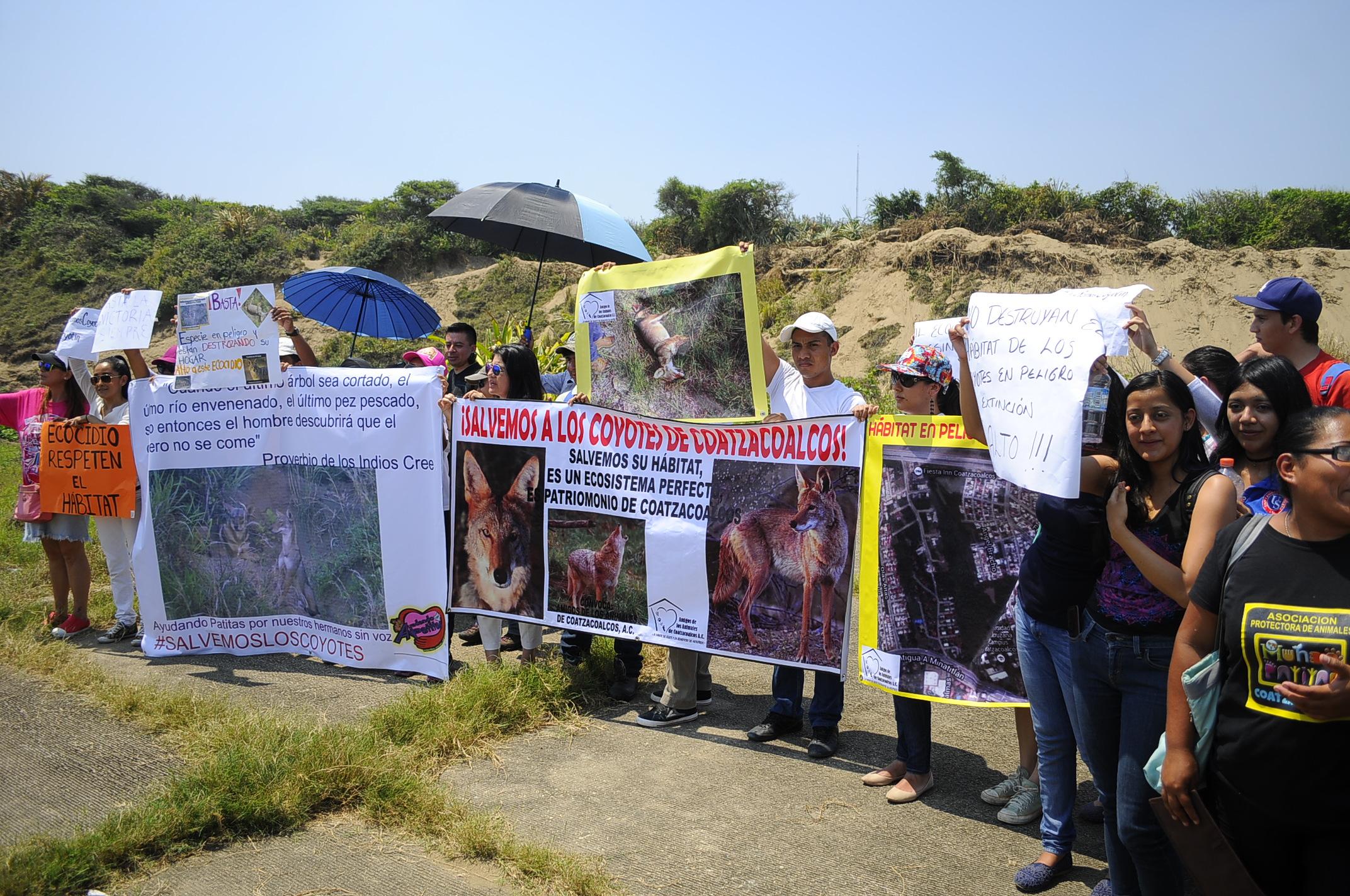 Ambientalistas exigen suspender devastación del sistema dunario de Coatzacoalcos