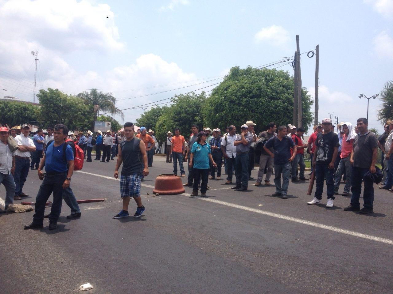 Productores de plátano exigen apoyos para 2 mil hectáreas devastadas por surada