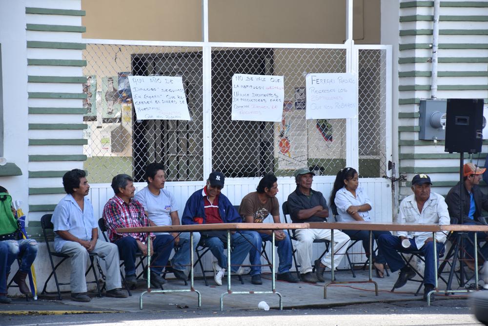 Productores exigen a Sedarpa el pago de proyectos productivos por 25 mdp