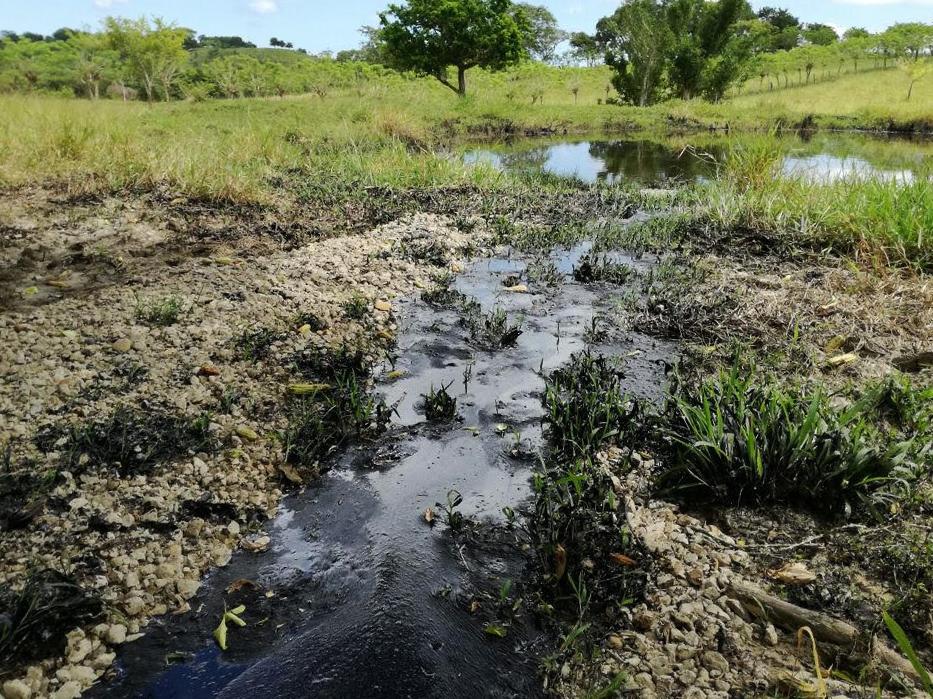 Brote virgen de hidrocarburo podría contaminar presa en Tamiahua