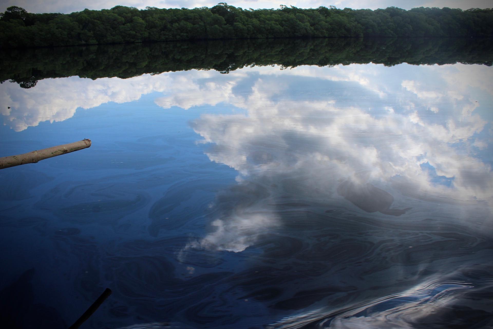 Pescadores de la zona sur exigen a Pemex remediar ecocidio y sanción a culpables