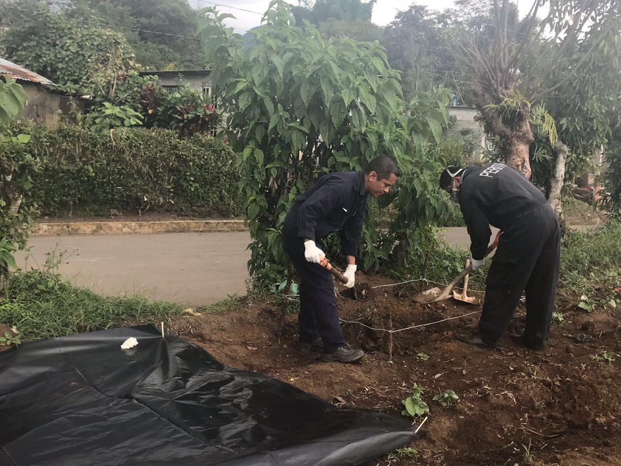 Localizan 11 cadáveres de animales en Atzacan