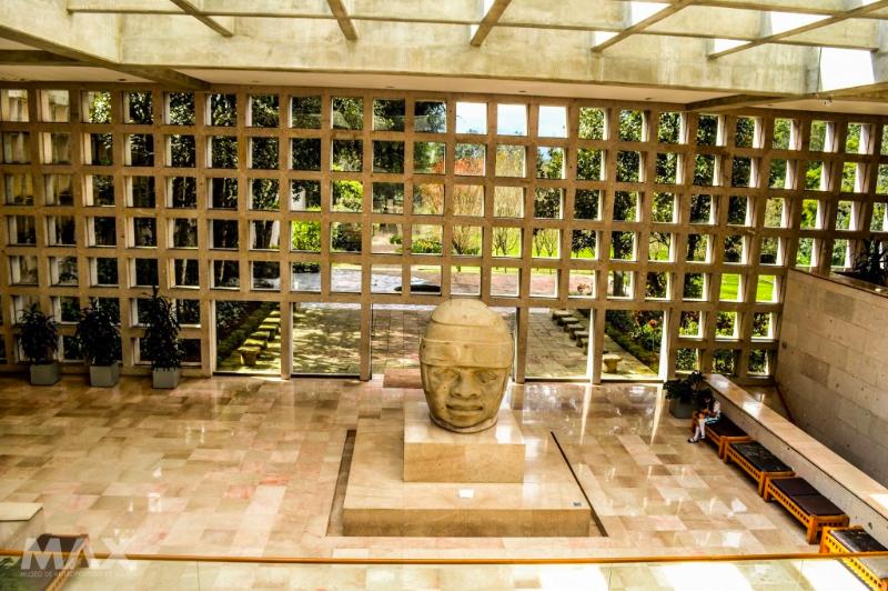 Museo de antropolog a de xalapa programa actividades y for Universidades en xalapa