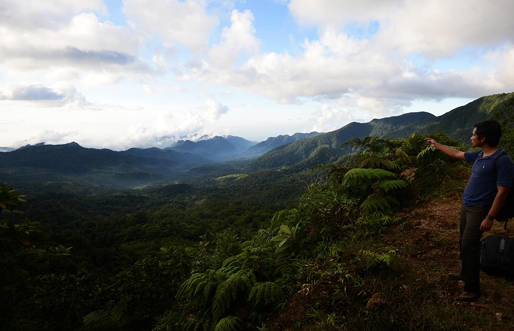 Ambientalistas buscarán amparo contra Ley de Biodiversidad