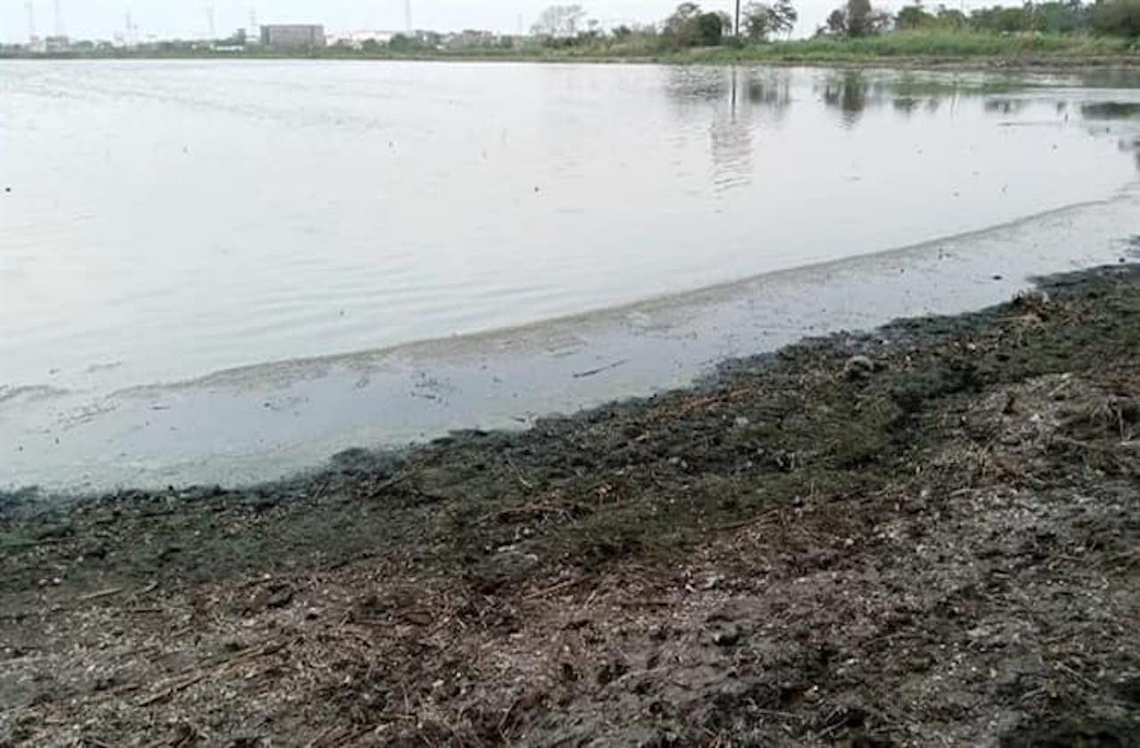 Advierten disminución de agua en Laguna Olmeca de Veracruz