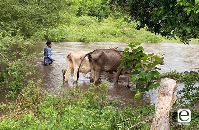 Última quincena de lluvias afectó a 64 municipios en Veracruz