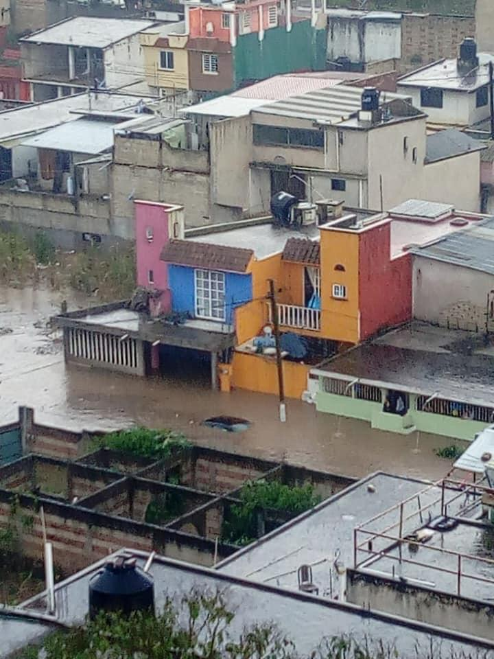 Tormenta tira 4 árboles, postes y genera anegaciones en Xalapa