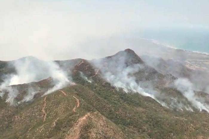 Alto Lucero: incendio ya afectó 800 hectáreas de selva, reporta PC