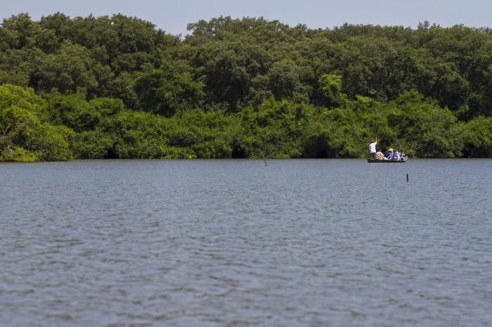 Ganadería, contaminación y urbanización, impactan al sistema lagunar de Alvarado