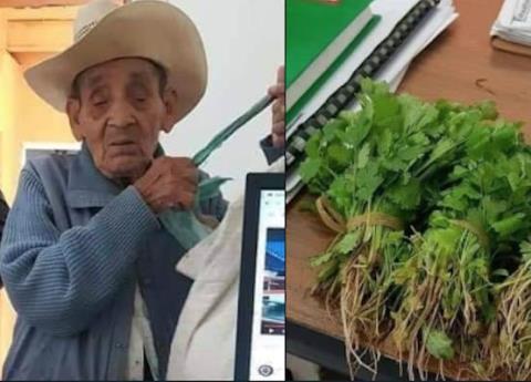 Campesino salvadoreño paga con ramos de cilantro su acta de nacimiento