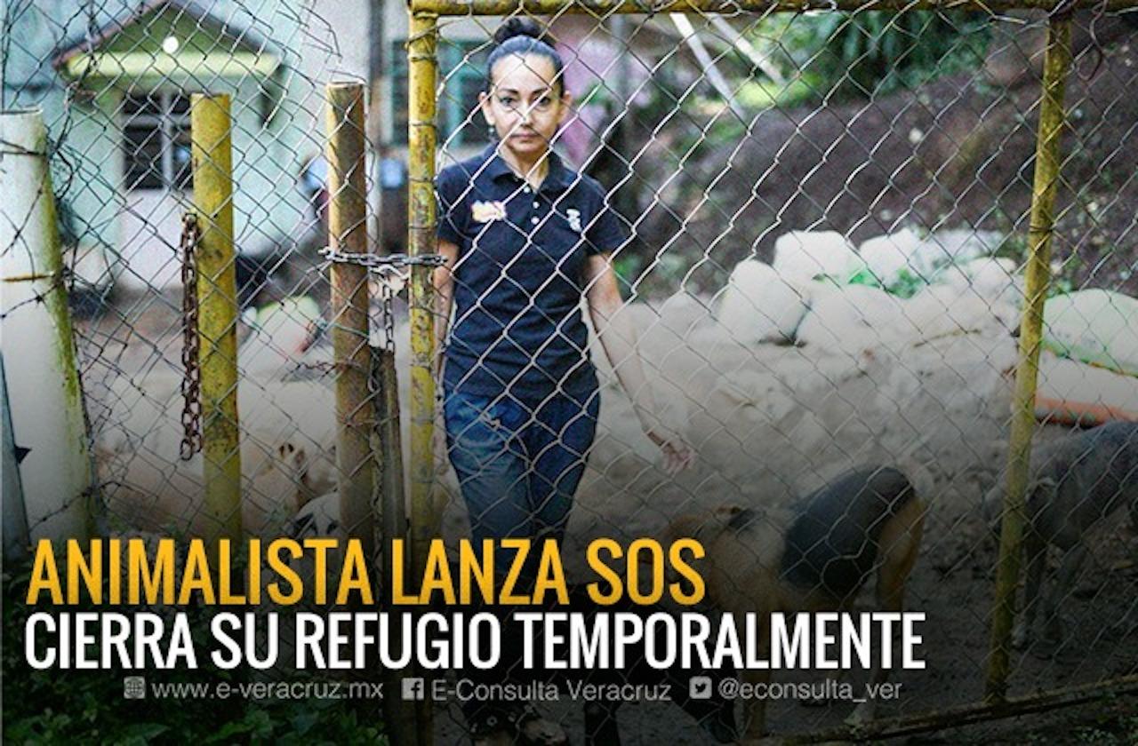 Aracely rescata michis y lomitos; hoy lucha contra el cáncer y pide ayuda
