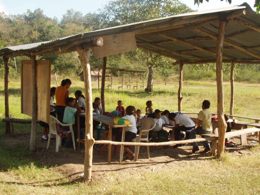 Normalistas y pedagogos no quieren enseñar en zonas rurales: SEV