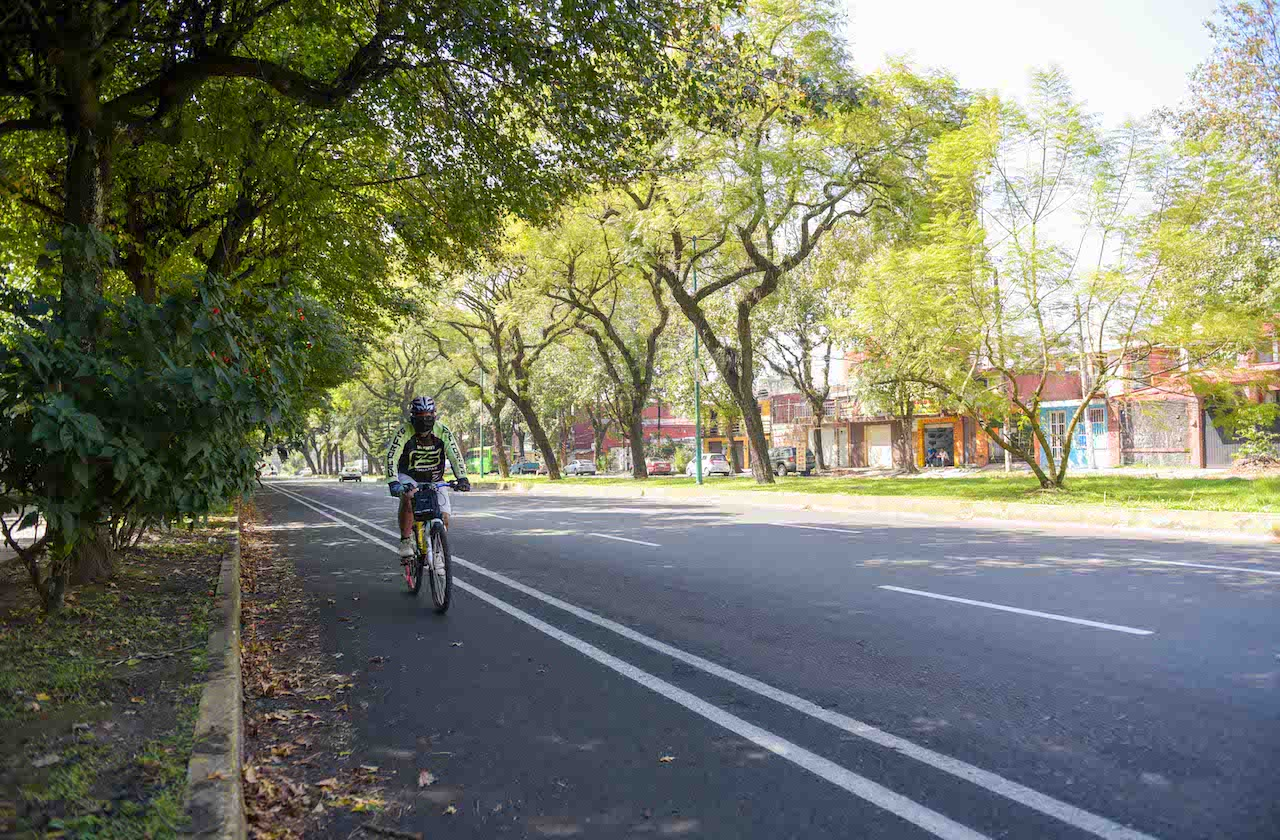 Así va el avance de la ciclovía de Xalapa