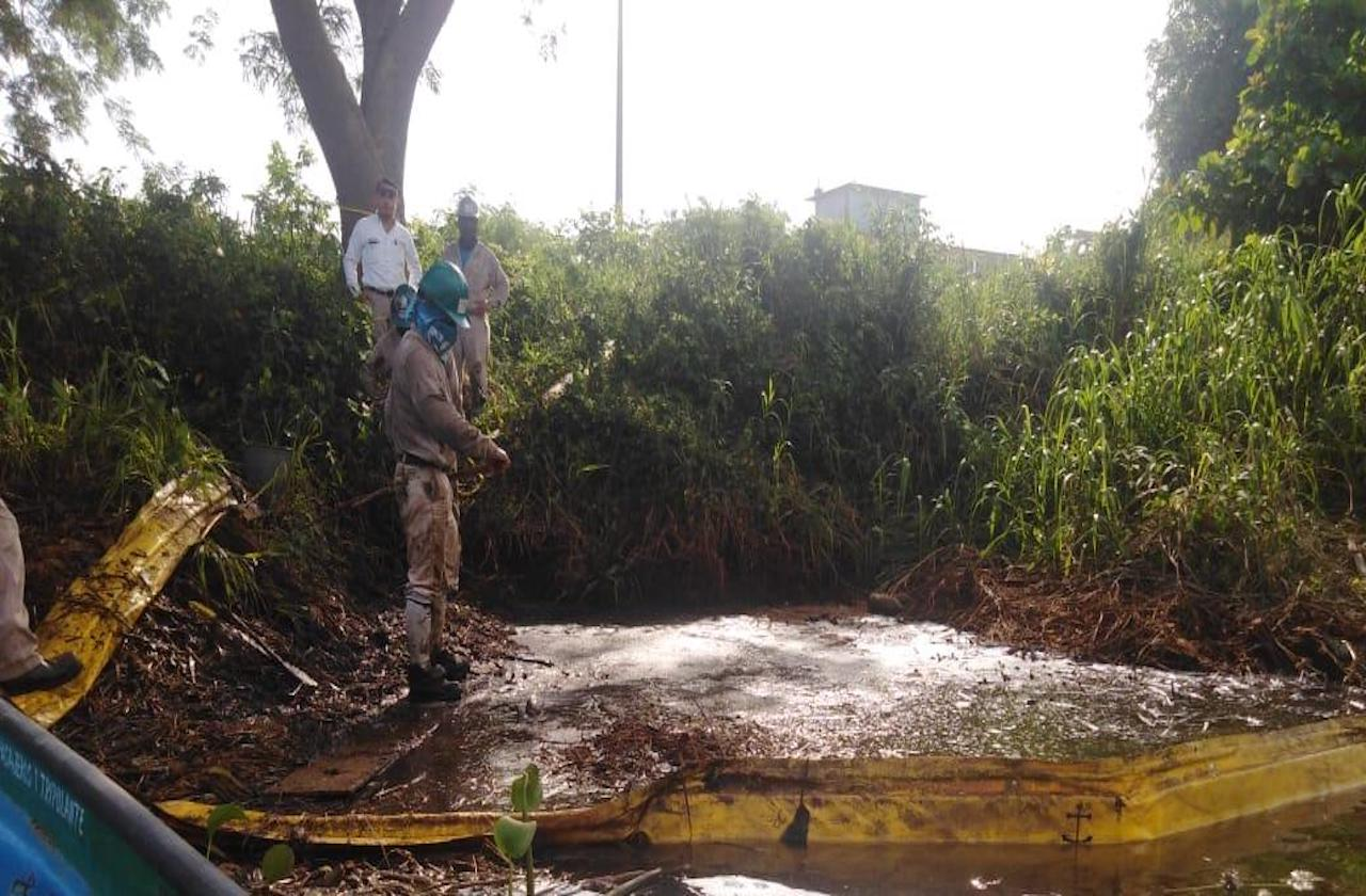 Aumenta mortandad de peces tras derrame en Minatitlán