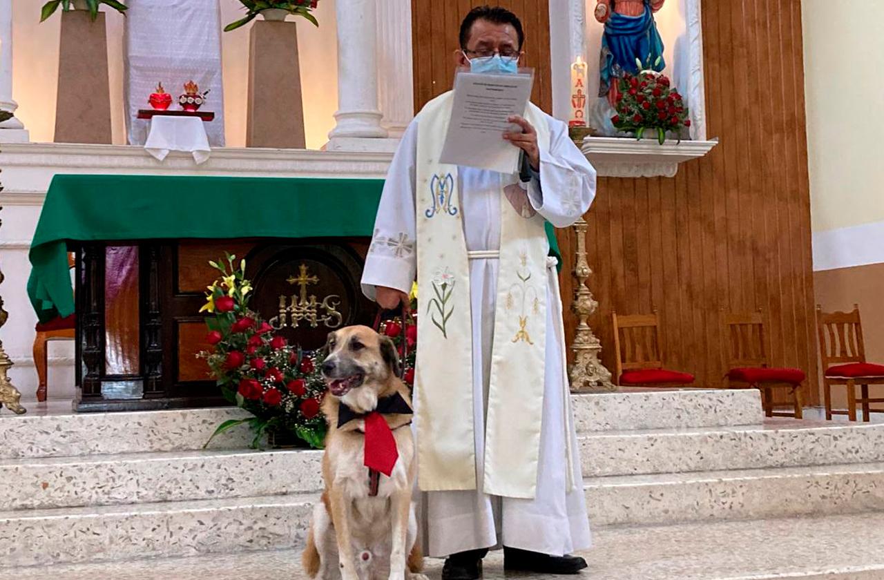 Bendición de mascotas en Xalapa fue presencial