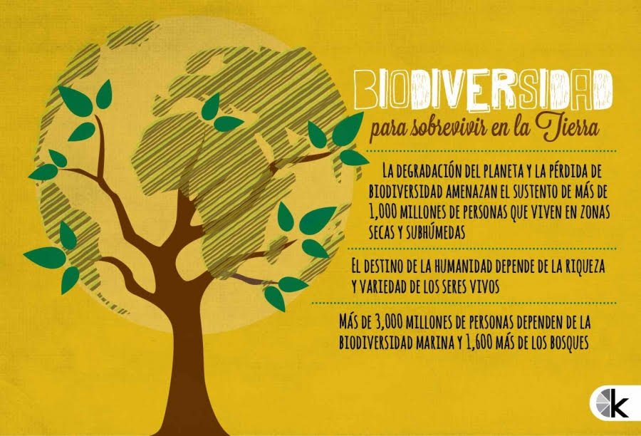 Biodiversidad para sobrevivir en la Tierra