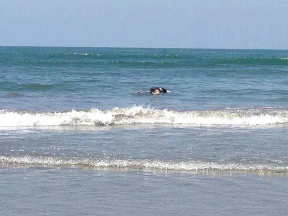 Guardavidas rescatan a familia a punto de ahogarse en Boca del Río