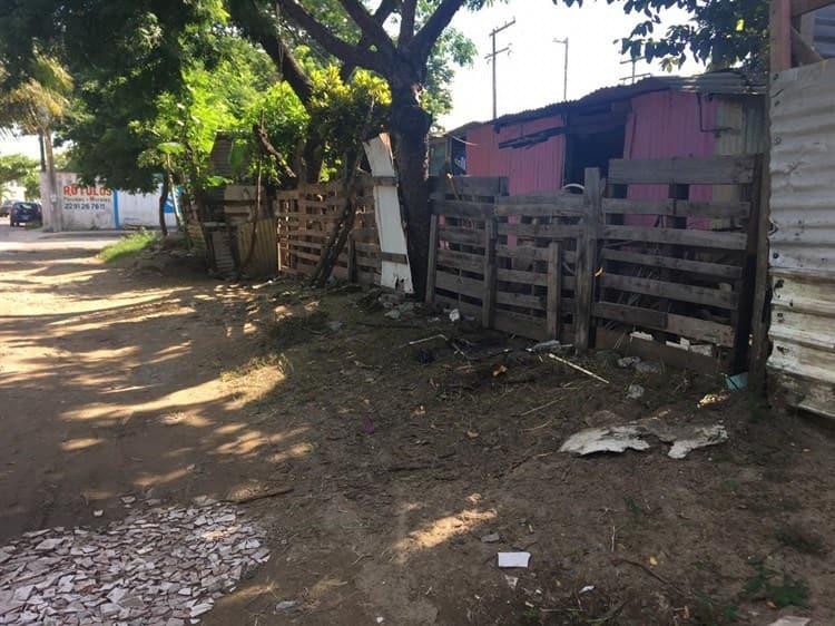 Reserva de Tarimoya I, colonia marginada y olvidada en el puerto de Veracruz