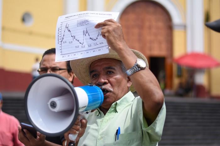 Nestlé importa café contaminado con roya, acusan productores