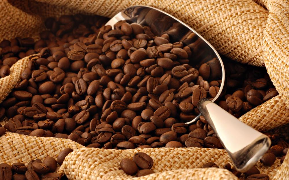 El café mexicano conquista el paladar en el extranjero