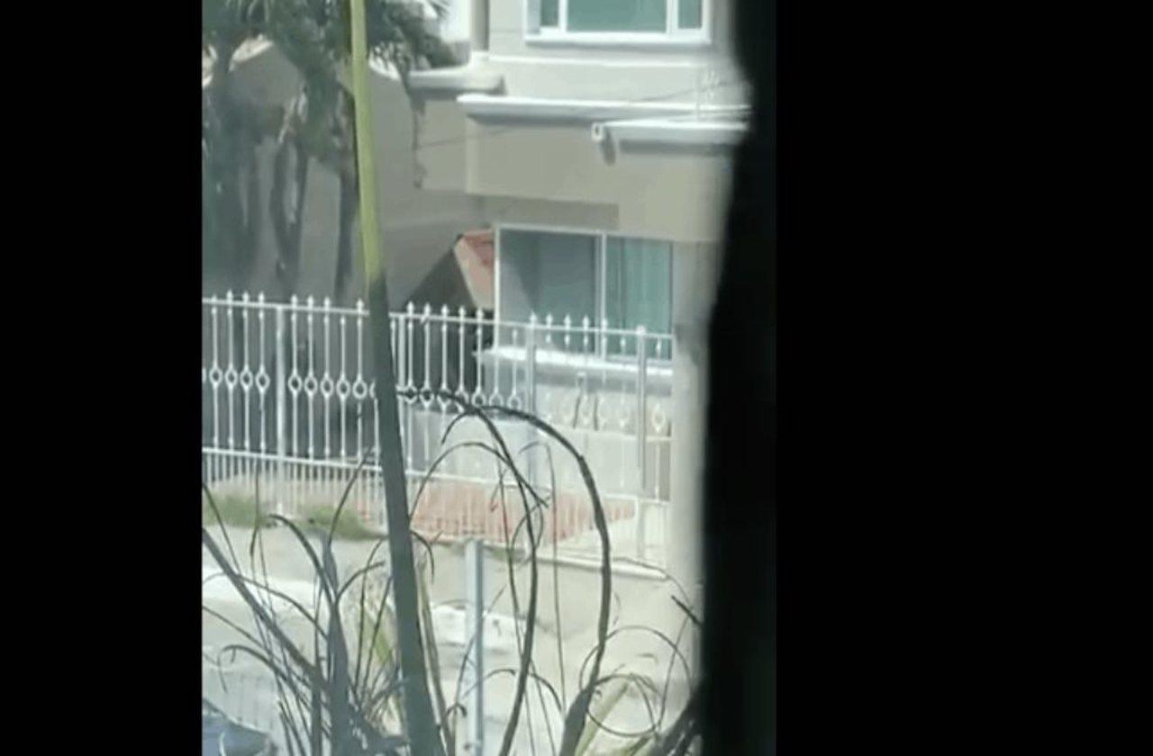 Denuncian a porteña por golpear a perro, en Costa de Oro